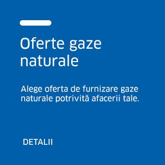 liberi-profesionisti-oferte-gaze-naturale-b-1