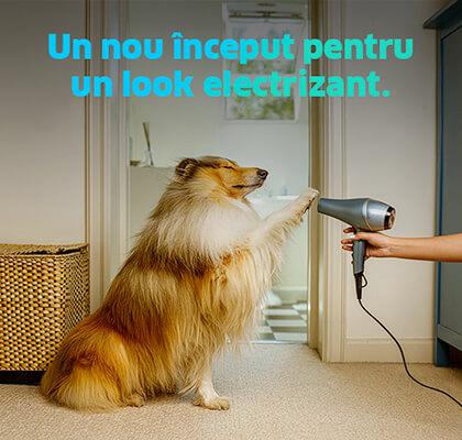 3.ENGIE_swiper-slide-Electricitate